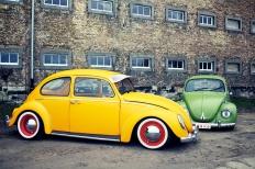 Zwei tolle Käfer räumen auf!