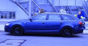 Audi A6 Avant (4F5) 06-2007 von Schnubbie1984  Kombi, Audi, A6 Avant (4F5)  Bild 662109