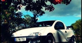 Letztes (Shooting) vor dem Winterschlaf  Opel Tigra  Bild 714057