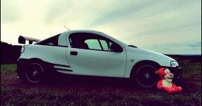 Letztes (Shooting) vor dem Winterschlaf  Opel Tigra  Bild 714058