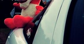 Letztes (Shooting) vor dem Winterschlaf  Opel Tigra  Bild 714059