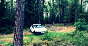Letztes (Shooting) vor dem Winterschlaf  Opel Tigra  Bild 714061
