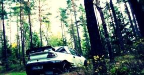 Letztes (Shooting) vor dem Winterschlaf  Opel Tigra  Bild 714071