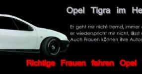 Letztes (Shooting) vor dem Winterschlaf  Opel Tigra  Bild 714073
