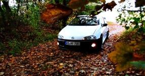 Letztes (Shooting) vor dem Winterschlaf  Opel Tigra  Bild 714082