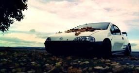 Letztes (Shooting) vor dem Winterschlaf  Opel Tigra  Bild 714083