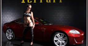 Kalender 2012  girls cars kalender 2012  Bild 709094