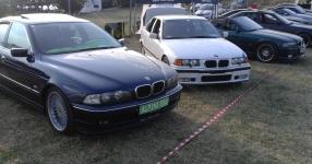 BMW 5 (E39) 07-1998 von SCHMORNDERL  Alpina B10,3,2lt  Bild 794179