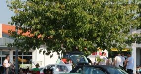 VW/Audi Abschlusstreffen Langenau 2016 89129 Langenau VW Audi tuning Car  Bild 805916