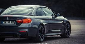 13.04.2017 | Fast & Furious 8 Premiere | DriveIn Autokino Aschheim DriveIn Autokino Aschheim 13.04.2017 Fast & Furious 8 Premiere DriveIn Autokino Aschheim SIXTEEntoNINE SXTNTNN  Bild 810444