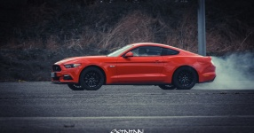 13.04.2017 | Fast & Furious 8 Premiere | DriveIn Autokino Aschheim DriveIn Autokino Aschheim 13.04.2017 Fast & Furious 8 Premiere DriveIn Autokino Aschheim SIXTEEntoNINE SXTNTNN  Bild 810575