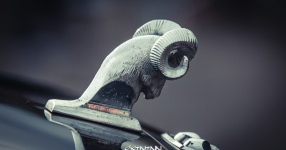 13.04.2017 | Fast & Furious 8 Premiere | DriveIn Autokino Aschheim DriveIn Autokino Aschheim 13.04.2017 Fast & Furious 8 Premiere DriveIn Autokino Aschheim SIXTEEntoNINE SXTNTNN  Bild 810688