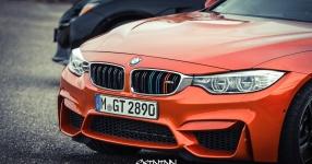 13.04.2017 | Fast & Furious 8 Premiere | DriveIn Autokino Aschheim DriveIn Autokino Aschheim 13.04.2017 Fast & Furious 8 Premiere DriveIn Autokino Aschheim SIXTEEntoNINE SXTNTNN  Bild 810698