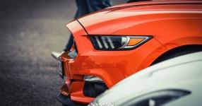 13.04.2017 | Fast & Furious 8 Premiere | DriveIn Autokino Aschheim DriveIn Autokino Aschheim 13.04.2017 Fast & Furious 8 Premiere DriveIn Autokino Aschheim SIXTEEntoNINE SXTNTNN  Bild 810708