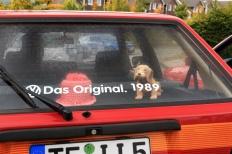 VAG am Ring 2017 Drees Nürburgring VW Golf Treffen meinGOLF.de Sommertreffen Nürburgring VW-GOLF-Treffen VAG-am-Ring 2017  Bild 814226